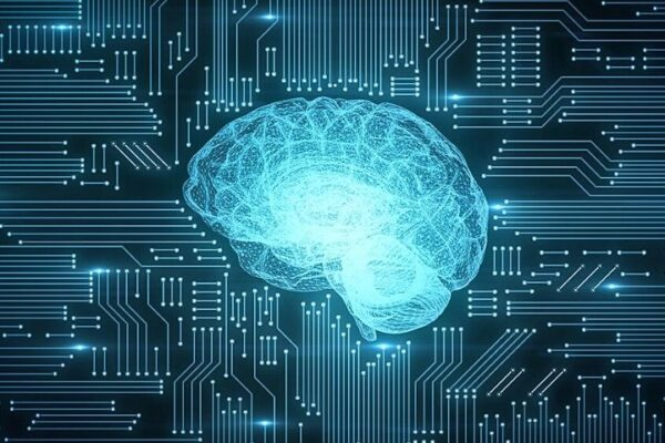 Self-Learning Systems: How Does Machine Learning Work?