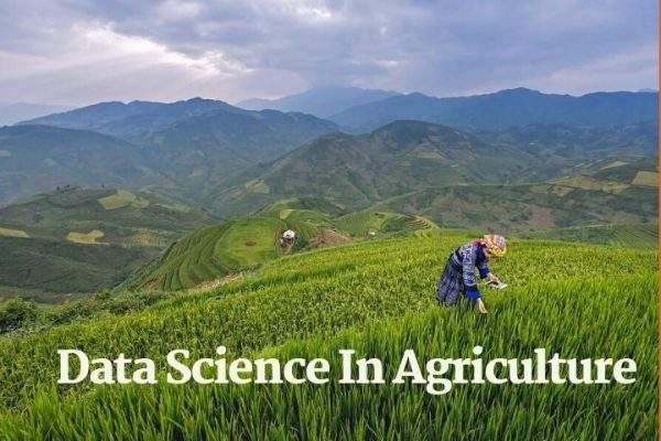 Data Science In Agriculture: How We Can Produce More Harvest